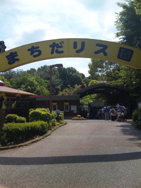 町田リス園に来ました。